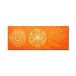 Wandbild Energiebild Energiebahnen Spirale Blume des Lebens gold orange Frontbild